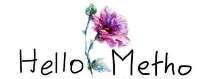Hello Metho Travel Services